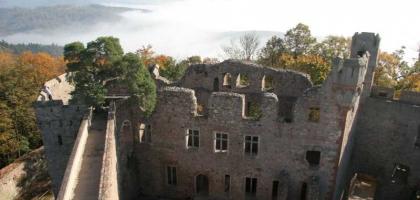 Bild von Schloss Auerbach - Burgschenke
