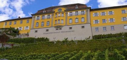 Bild von Staatsweingut-Meersburg