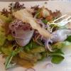 Nordischer Matjes auf frischen Salaten