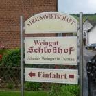 Foto zu Schloßhof: Rotweinwanderweg 2013
