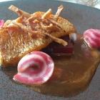 Rotbarbe aus Bretonien