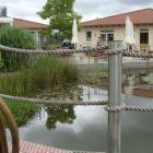 Foto zu Café am See: Blick zum See