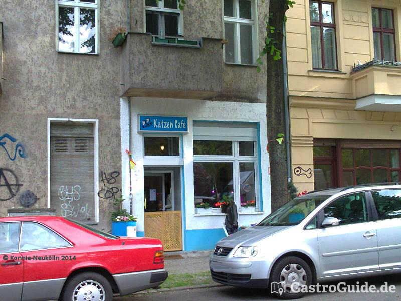 Berlin Cafe Mit Katzen