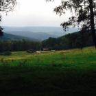 Foto zu Die Hochwaldalm: Panoramablick auf die Hochwaldalm