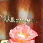 Foto zu Kirschencafe: herzlich Willkommen