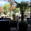 Blick aus dem Restaurant auf die schöne Sommerterasse