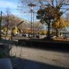 Ausblick vom Fenster zum Rhein