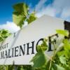 Neu bei GastroGuide: Weinstube Amalienhof