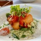 Foto zu Restaurant Alto im Atlantic Grand Hotel: Milo-Kabeljau, Tomatenragout, Wildkräuter, Beurre blanc
