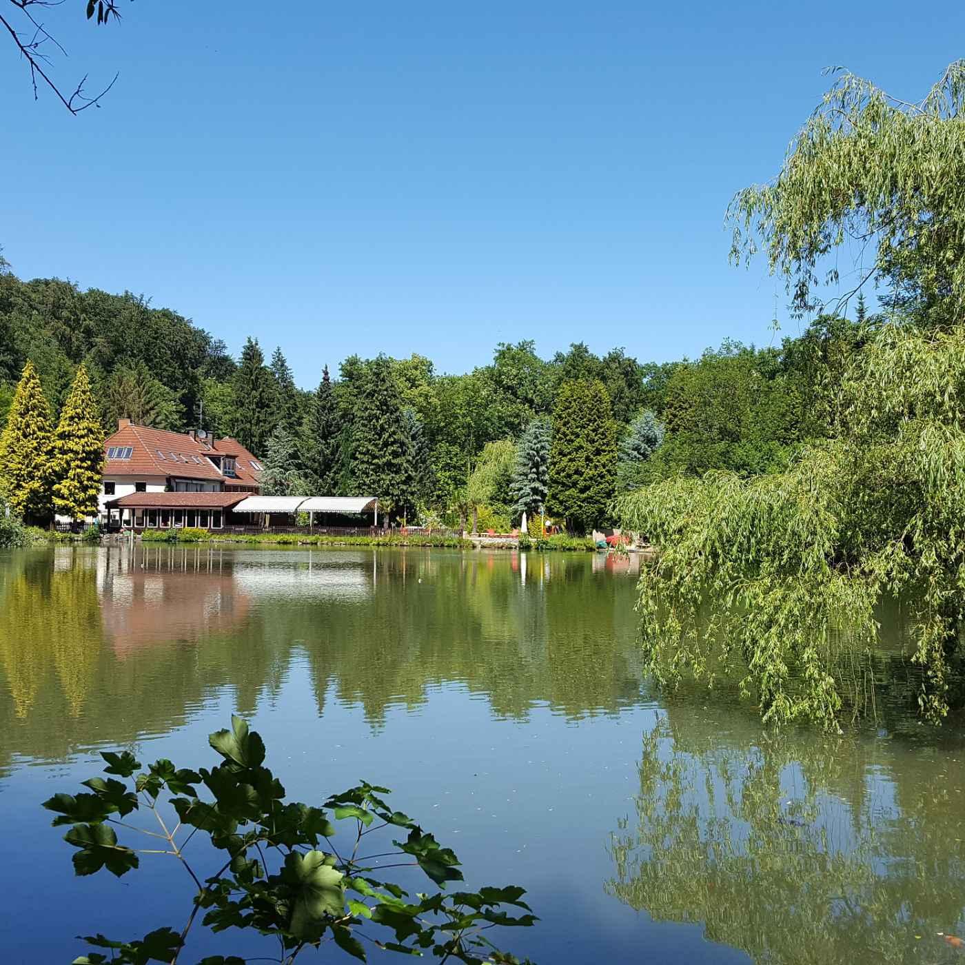 Bild zur Nachricht von Waldhotel Zur Holzmühle, Restaurant & Beach Lounge