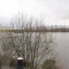 Rheinblick aus dem Fenster