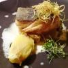 Skreifilet | Aprikosen-Rieslingkraut | Kartoffel-Limonenstampf