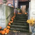 Foto zu Wilde Triebe: 14.10.19 Mittagessen