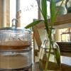 Bild von Lieblings-Kaffee