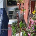 Foto zu Wehlener Elbpegel: Mediterranes Ambiente direkt vor dem Restaurant