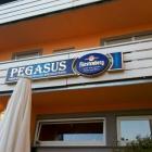 Foto zu Pegasus: