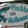 Neu bei GastroGuide: Fischhof am Mellensee