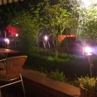 Foto zu El Toro de Oro: Terrasse