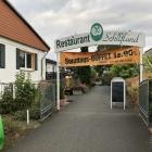 Foto zu Schilfland:
