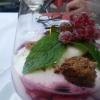 Joghurt-Beeren-Trifle mit Kokos und Schokoladen-Cookies