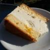 Käse Sahnetorte vom kurzen schon angeknabbert