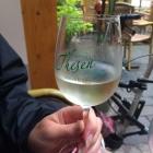 Foto zu Weinstube im Weingut Thesen: 13.9.15