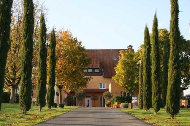 Bild zur Nachricht von Gehrings Weinwirtschaft