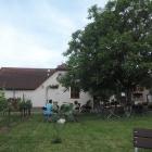 Foto zu Pfälzer GenussFraktion: Die Weingarten-Terrasse