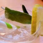 Foto zu Restaurant Friedrich: Salbei, Limette, Soda