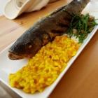 Foto zu Lotte Mee(h)r als nur Fisch:
