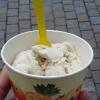 Vanilleeis aus Sojamilch