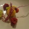 Gelbe Beete mit Variationen von der Tomate