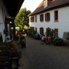 Foto zu Burrweiler Mühle · Weingut: Im Innenhof