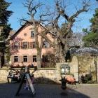 Foto zu Schloss Deidesheim: .