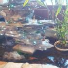 Foto zu King's Garden: Brunnen mit Fischen