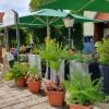 Neu bei GastroGuide: Rosengarten Altenweddingen