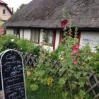 Foto zu Café Helene Weigel Haus: Café Helene Weigel Haus im Juli 2017