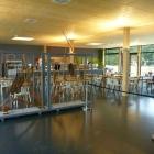 Foto zu Restaurant im Dinsaurier-Park: