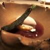 Pré-Dessert: Hickory-Eis mit Salat von saisonalen Früchten und Dörrobst