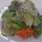 Foto zu Waldhotel Felschbachhof: gemischter Beilagensalat