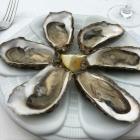 Foto zu Sylter Muschelbude: 17.8.19 / auch hier gibt es Austern