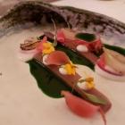 Foto zu Restaurant Weinhaus Uhle: Mecklenburger Maräne
