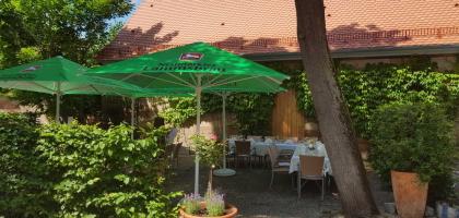 Fotoalbum: Der Garten