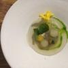 Kingfish als Ceviche, Tomate und Jalapeno