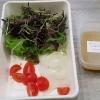 Salat und Dressing zur Vorspeise