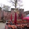 Bild von Burg Montclair