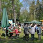 Foto zu Waldidyll im Elsthal: