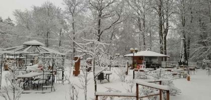 Fotoalbum: Waldidyll im Schnee