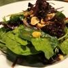 Karamellisierte Ente | Grapefruit | Rote Zwiebel | Wildkräutersalat | Erdnuss | Cranberries