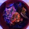 Neu bei GastroGuide: Ristorante Pizzeria  Il Pescatore
